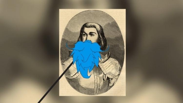 vlipp - Barbe Bleue de Retz